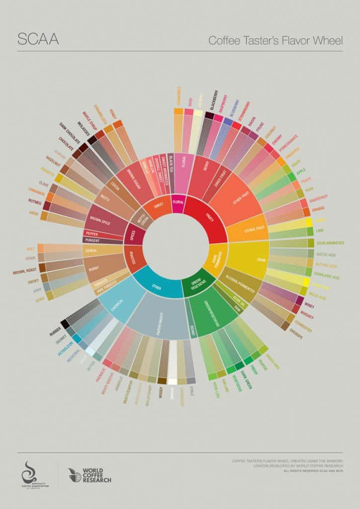Coffee Taster's Flavor Wheel by World Coffee Research