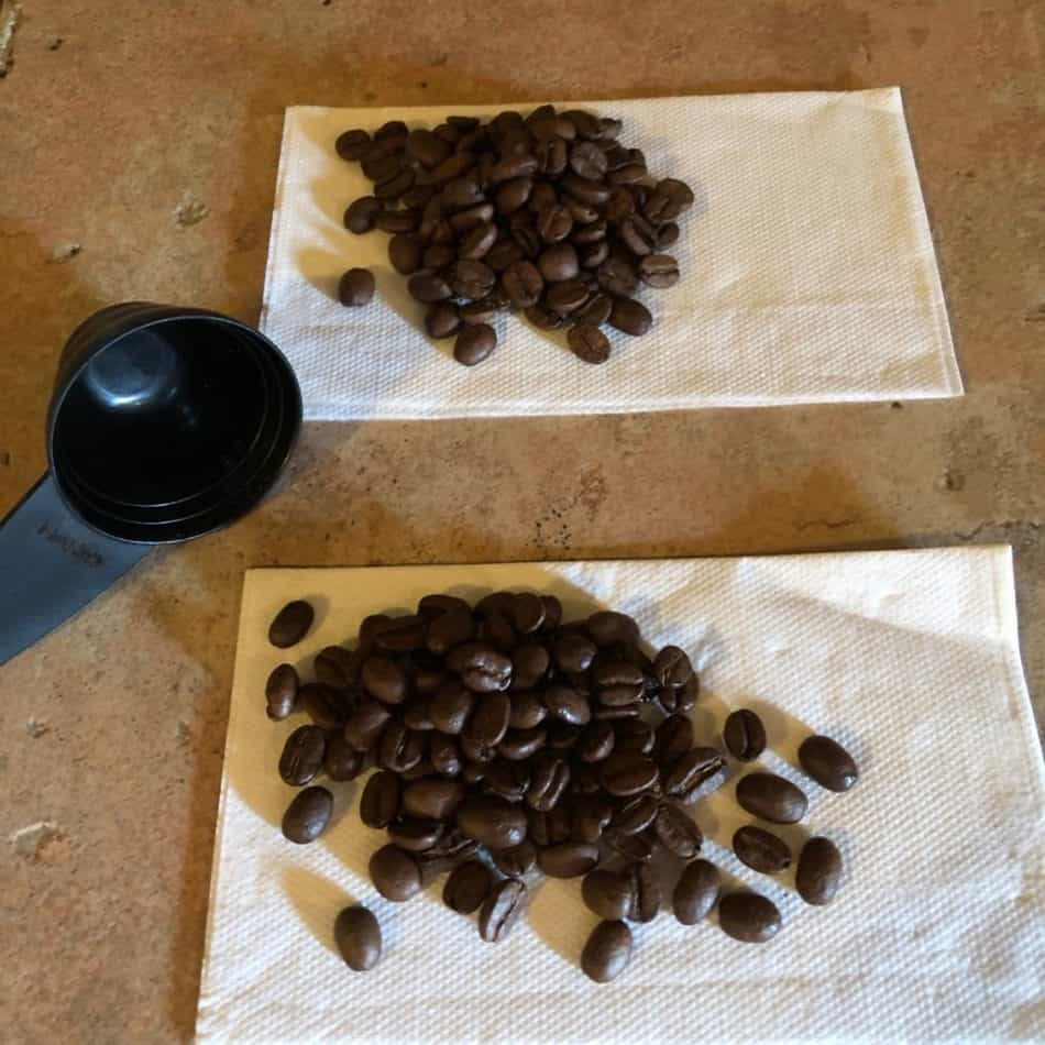 coffee scoop and coffee beans